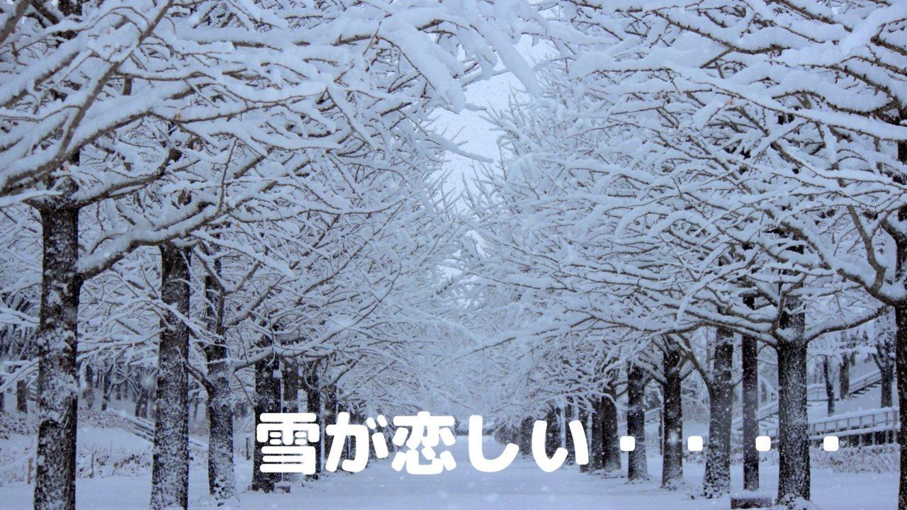 は 雪が ない 今年 降ら